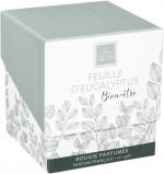 Bougie parfumée Feuille d'Eucalyptus 190 gr