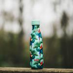 Bouteille isotherme PERROQUET à double paroi, 500 ml, Gourde en acier inoxydable - Garde Froid 8h ou Chaud 12h - Sans BPA