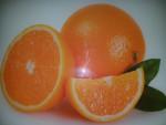 Planche à découper en verre trempé 4mm, 40x30 cm, Décor Oranges