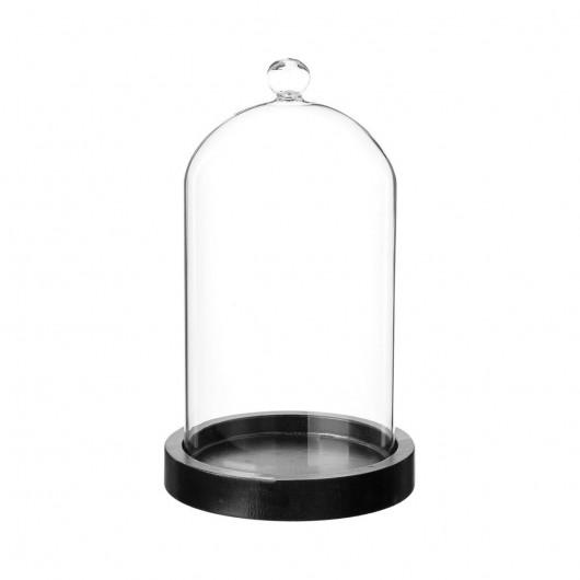 Cloche en verre sur socle