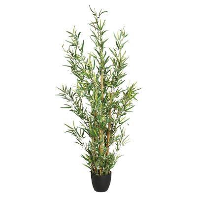 Bambou H120cm