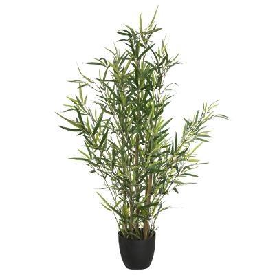 Bambou H90
