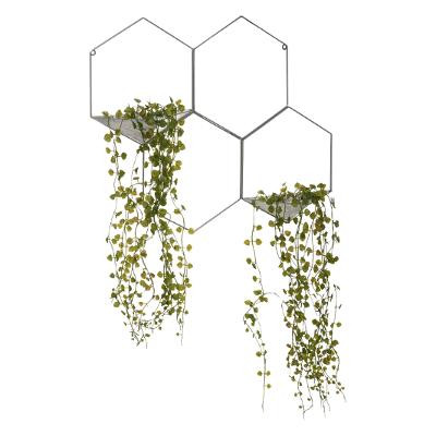 Plantes suspendues dans supports hexagones, Décoration murale